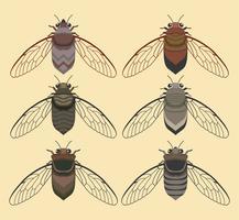 Cicada Bug Com Coleção De Fundo Amarelo De Vetor