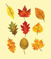 Vector de folhas de outono texturizadas grátis