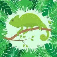 Camaleão Sobre Um Ramo De Molho De Folhas Tropicais vetor