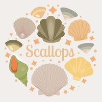 Vector Scallops Seashell Grátis