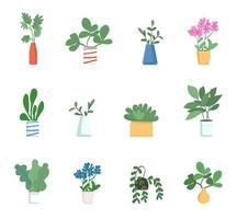 conjunto de objetos de plantas de casa