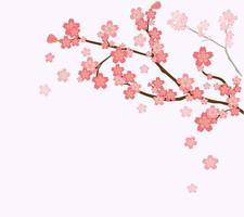 galhos e flores de cerejeira vetor