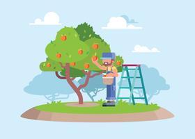 Um trabalhador escolhendo pêssego fresco da ilustração da árvore vetor