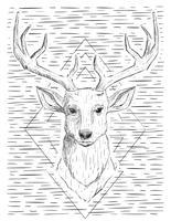 Ilustração desenhada mão dos cervos do vetor abstrato desenhado