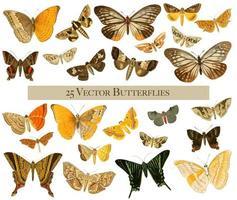 25 borboletas vintage em aquarela vetor