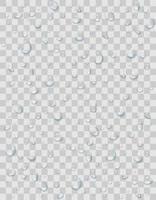 gotas de água ou chuva em fundo transparente vetor