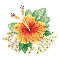 flor havaiana de laranja com botões e folhas pintando vetor