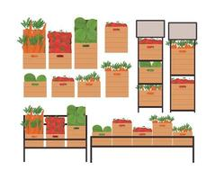 tomates alfaces e cenouras dentro de caixas e prateleiras vetor