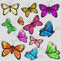conjunto de borboletas diferentes em fundo transparente vetor