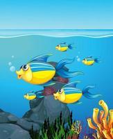 muitos peixes exóticos personagem de desenho animado no fundo subaquático vetor