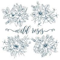 coleção de buquês de rosas selvagens vetor