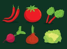 Vetor de coleção de vegetais