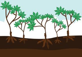 Vetora de plantas de mandioca vetor