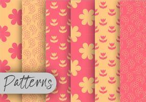 Conjunto de padrões florais de corais e laranjas