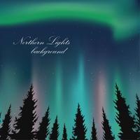 Ilustração da paisagem das luzes do norte vetor