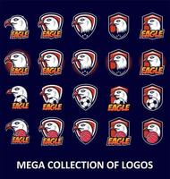 conjunto de logotipo de águia careca vetor