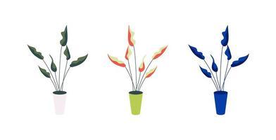 planta em vaso conjunto de objetos planos