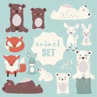 coleção de floresta fofa e animais polares vetor