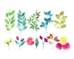 Vector Watercolor Spring Ramos e Flores