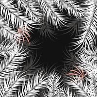 design tropical com folhas de palmeira branca e plantas em fundo escuro vetor