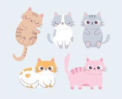 gato fofo pose diferente desenho animado animal personagem engraçado vetor