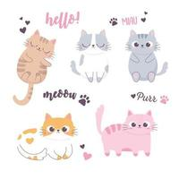 gatos fofos dormindo e diferentes raças personagem de desenho animado vetor