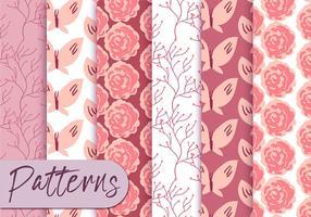 Conjunto de padrões de rosas rosas macias