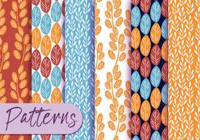 Conjunto colorido de padrões de botânica