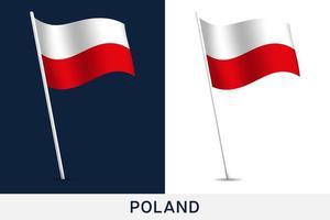 bandeira de vetor da polônia