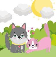 cão e gato husky na grama animais adoráveis ao ar livre vetor