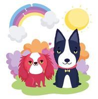 cachorro preto e branco com coleira e cachorro sentado na paisagem animais de estimação