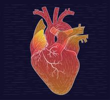 ilustração desenhada mão do coração do coração vetor