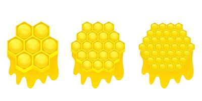 ilustração em vetor favo de mel isolada no fundo branco