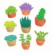 Succulents Aquarela vetor