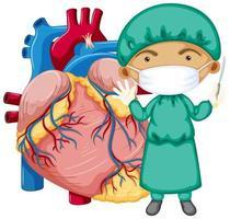 coração humano com um médico usando máscara de personagem de desenho animado vetor