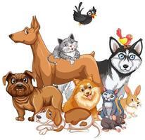 grupo de animal de estimação em fundo branco vetor