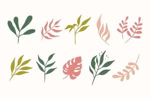 vários ramos de folhas desenhados à mão vetor
