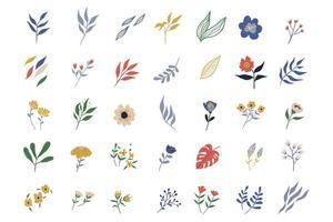 flores e coleção de elementos de folha com flores silvestres