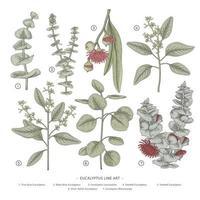 elementos de mão desenhada de ramo de eucalipto.