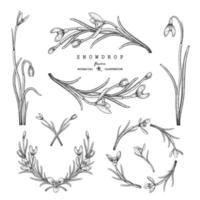 elementos desenhados à mão de flor de floco de neve vetor