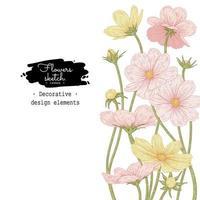 desenhos de flores do cosmos rosa e amarelo.