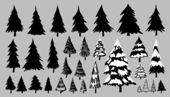 pinheiros ou abetos vetor