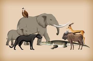 grupo de animais selvagens no fundo vetor