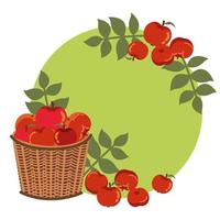 maçãs do outono em cesta de vime com decoração de folhas vetor