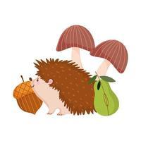 outono ouriço bolota pêra e cogumelos isolados projeto fundo branco vetor