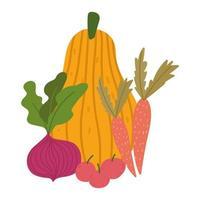 vegetais frescos frutas abóbora maçãs cenouras e beterraba design isolado vetor