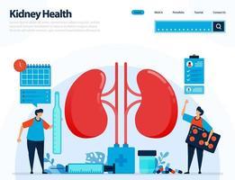 ilustração para verificar a saúde dos rins. doenças e distúrbios renais. verificação e manuseio de órgãos internos. projetado para página de destino, modelo, ui ux, site, aplicativo móvel, folheto, brochura vetor