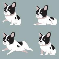 bulldog francês em diferentes poses. vetor