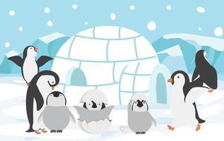 família de pinguins ao ar livre