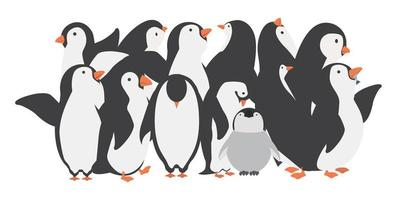 personagens da família de pinguins felizes em diferentes poses